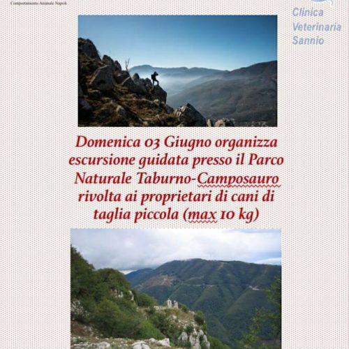 Escursione Parco Taburno-Camposauro 3 Giugno 2018