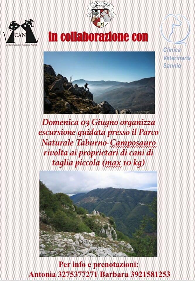 Escursione Parco Taburno-Camposauro | 3 Giugno 2018
