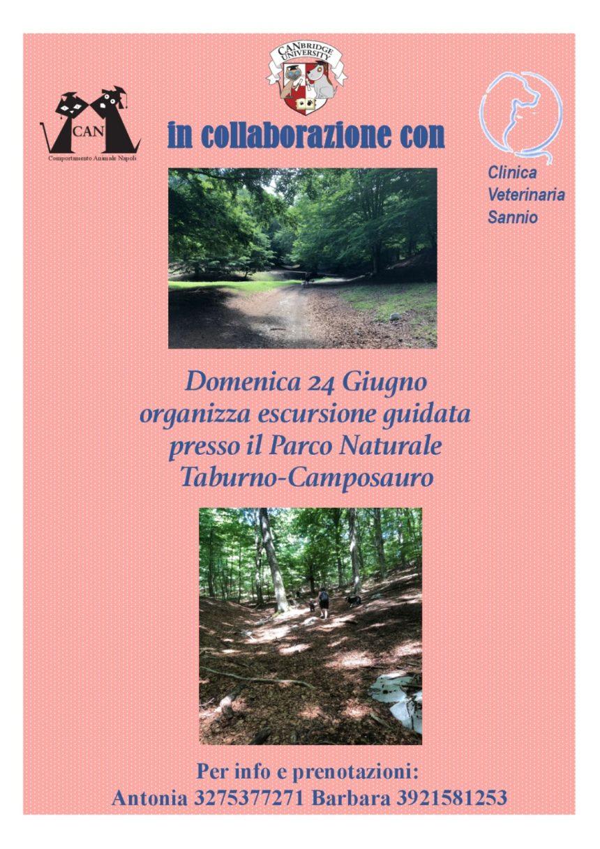 Escursione Parco Taburno-Camposauro | 24 Giugno 2018