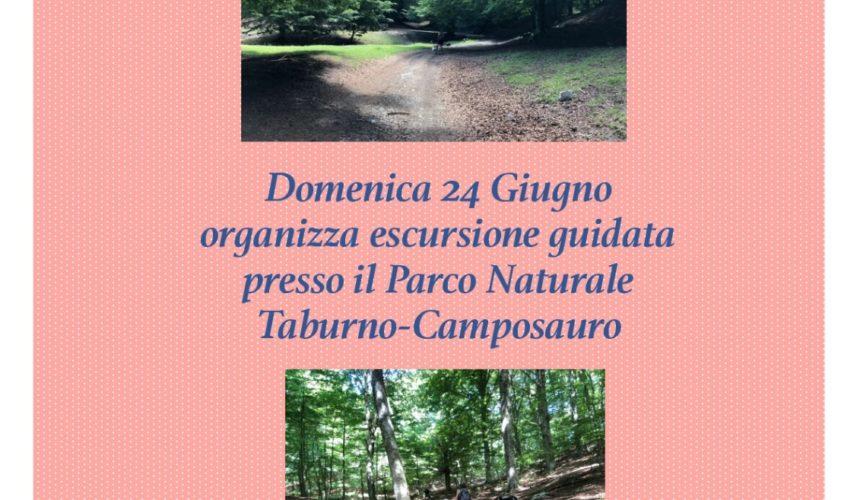 Escursione Parco Taburno-Camposauro 24 Giugno 2018